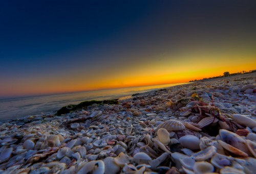 A Sanibel Sunset